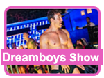 Dreamboys Male Cabaret Show