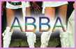 Abba Dance Class Hen Party Activity
